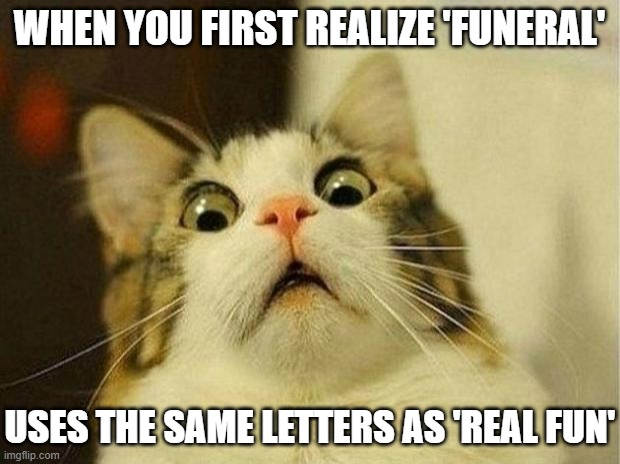 It's real fun |  WHEN YOU FIRST REALIZE 'FUNERAL'; USES THE SAME LETTERS AS 'REAL FUN' | image tagged in memes,scared cat,funeral,funny memes,dark humor,anagram | made w/ Imgflip meme maker