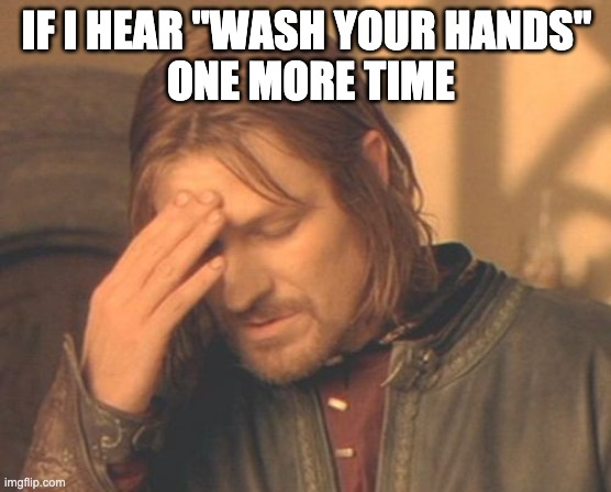 "Frustrated Boromir |  IF I HEAR ""WASH YOUR HANDS""   ONE MORE TIME 