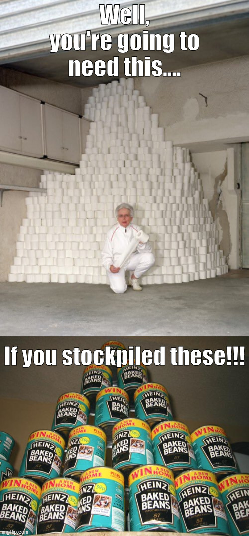 Well, you're going to need this.... If you stockpiled these!!! | image tagged in mountain of toilet paper | made w/ Imgflip meme maker