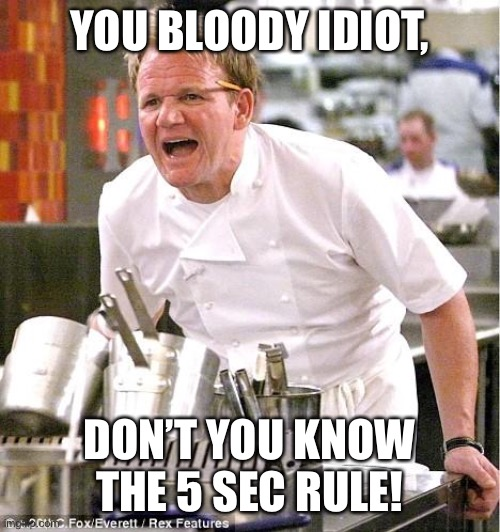 Chef Gordon Ramsay Meme |  YOU BLOODY IDIOT, DON'T YOU KNOW THE 5 SEC RULE! | image tagged in memes,chef gordon ramsay | made w/ Imgflip meme maker