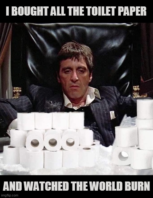 TP Apocalypse |  I BOUGHT ALL THE TOILET PAPER; AND WATCHED THE WORLD BURN | image tagged in memes,tony montana,toilet paper,coronavirus,corona,no more toilet paper | made w/ Imgflip meme maker