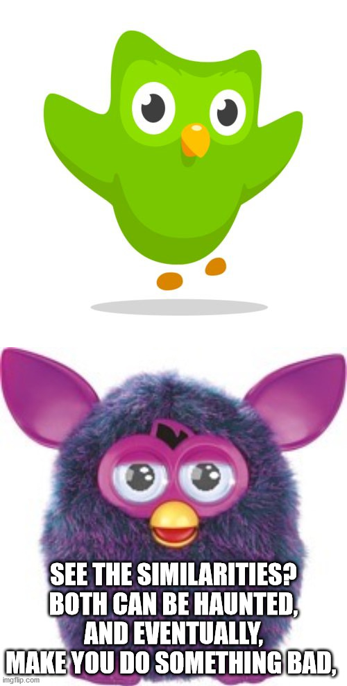 SEE THE SIMILARITIES? BOTH CAN BE HAUNTED, AND EVENTUALLY, MAKE YOU DO SOMETHING BAD, | image tagged in furby,things duolingo teaches you | made w/ Imgflip meme maker