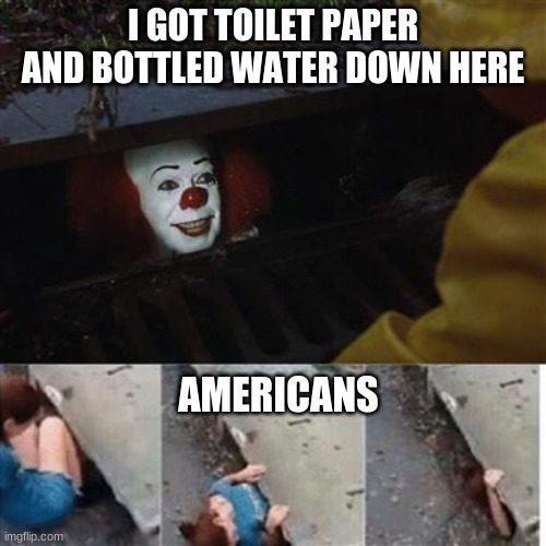 Cosco no have it |  I GOT TOILET PAPER AND BOTTLED WATER DOWN HERE; AMERICANS | image tagged in pennywise in sewer | made w/ Imgflip meme maker