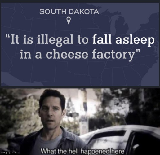 No sleeping | image tagged in what the hell happened here,law,stupid,stupid law,cheese,sleeping | made w/ Imgflip meme maker