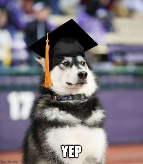 Graduate Dog | YEP | image tagged in graduate dog | made w/ Imgflip meme maker