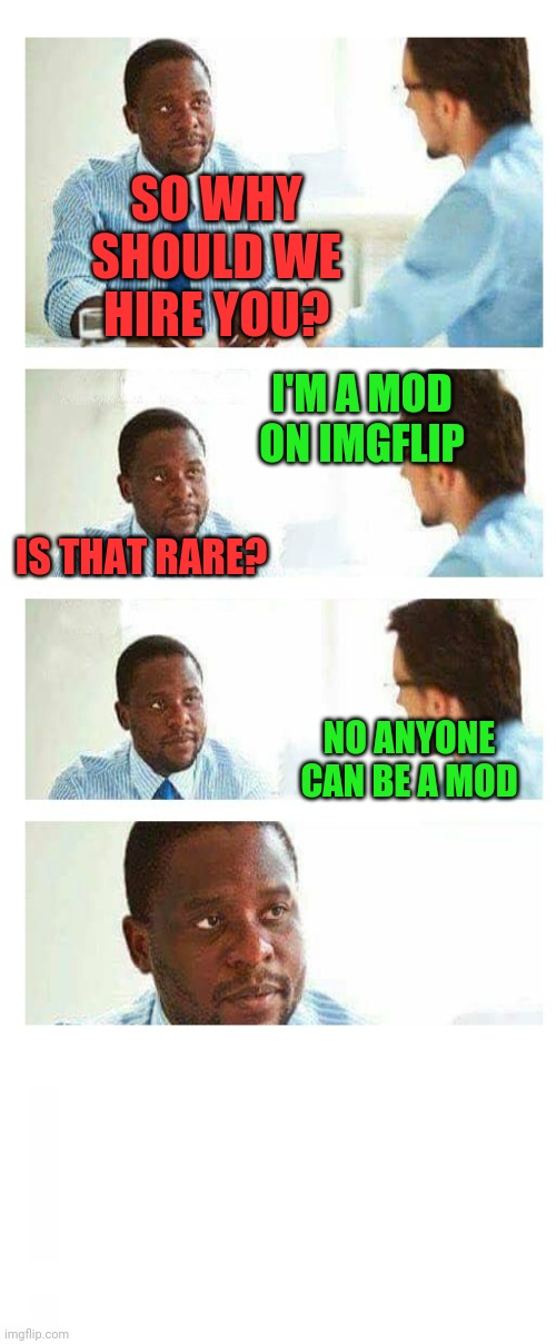 SO WHY SHOULD WE HIRE YOU? I'M A MOD ON IMGFLIP; IS THAT RARE? NO ANYONE CAN BE A MOD | image tagged in interview about unicorns,aaa | made w/ Imgflip meme maker