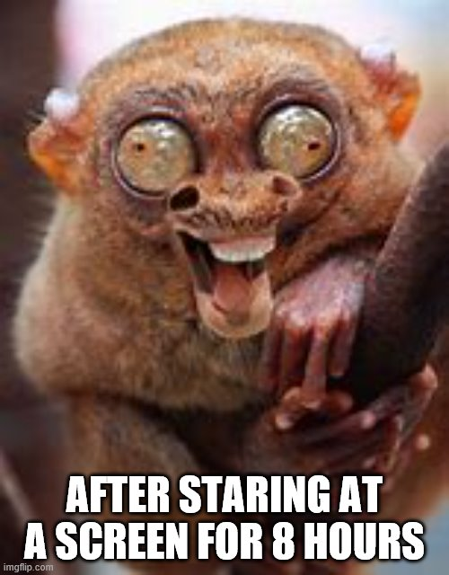 AFTER STARING AT A SCREEN FOR 8 HOURS | image tagged in crazy eyes | made w/ Imgflip meme maker