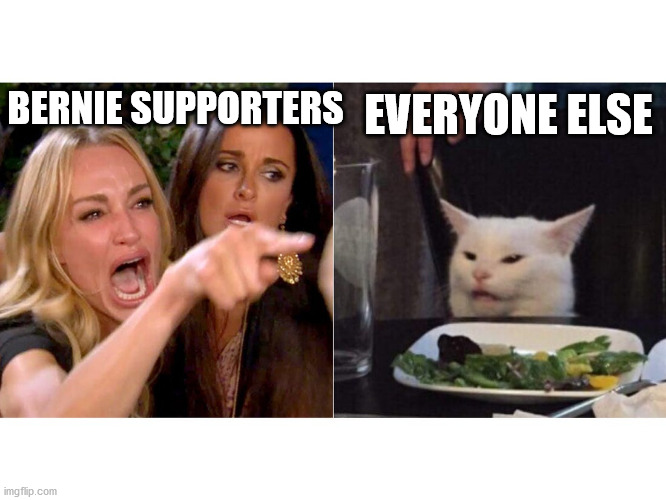 EVERYONE ELSE; BERNIE SUPPORTERS | image tagged in bernie sanders,bernie,bernie supporters,sjws,leftists,america | made w/ Imgflip meme maker