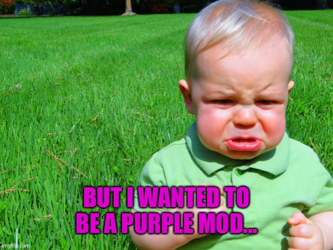 toddler pouting | BUT I WANTED TO BE A PURPLE MOD... | image tagged in toddler pouting | made w/ Imgflip meme maker