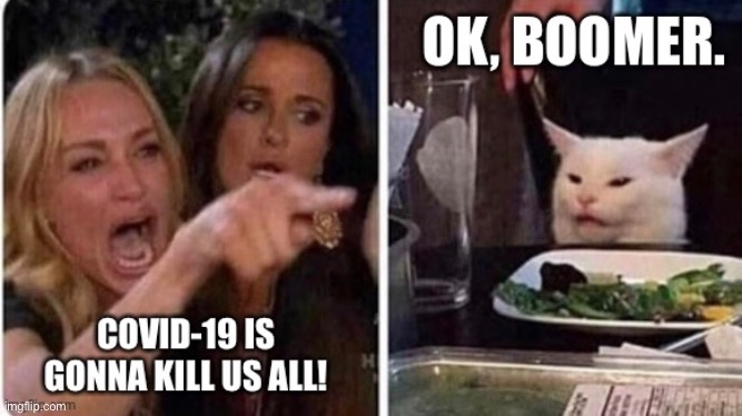 Covid-19 Ok Boomer | image tagged in angry lady cat,lady screams at cat,covid-19,coronavirus,ok boomer | made w/ Imgflip meme maker