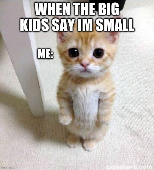 Cute Cat |  WHEN THE BIG KIDS SAY IM SMALL; ME: | image tagged in memes,cute cat | made w/ Imgflip meme maker