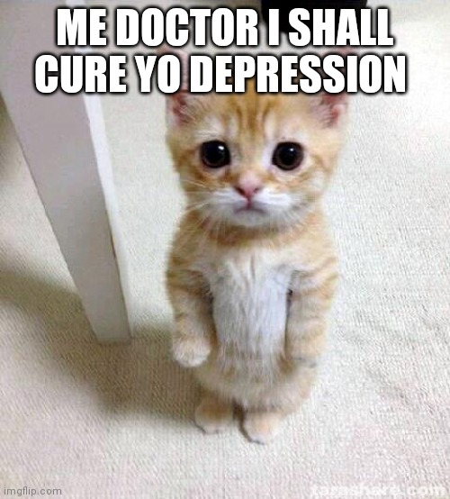 Cute Cat |  ME DOCTOR I SHALL CURE YO DEPRESSION | image tagged in memes,cute cat | made w/ Imgflip meme maker