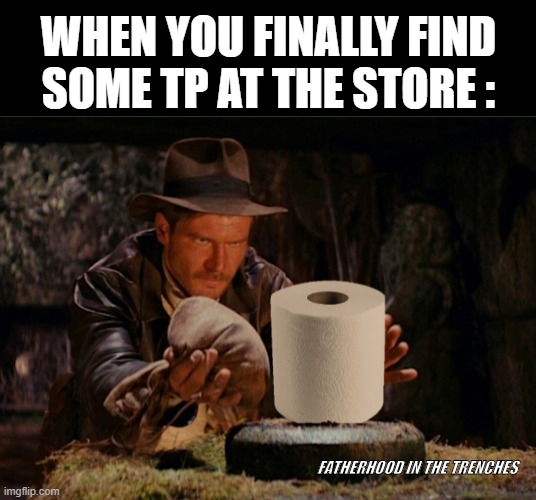 Fortune and Glory |  WHEN YOU FINALLY FIND SOME TP AT THE STORE :; FATHERHOOD IN THE TRENCHES | image tagged in coronavirus,toilet paper,indiana jones | made w/ Imgflip meme maker
