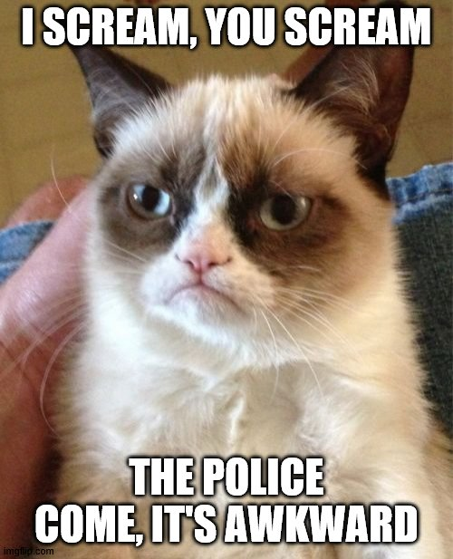 Grumpy Cat Meme |  I SCREAM, YOU SCREAM; THE POLICE COME, IT'S AWKWARD | image tagged in memes,grumpy cat | made w/ Imgflip meme maker