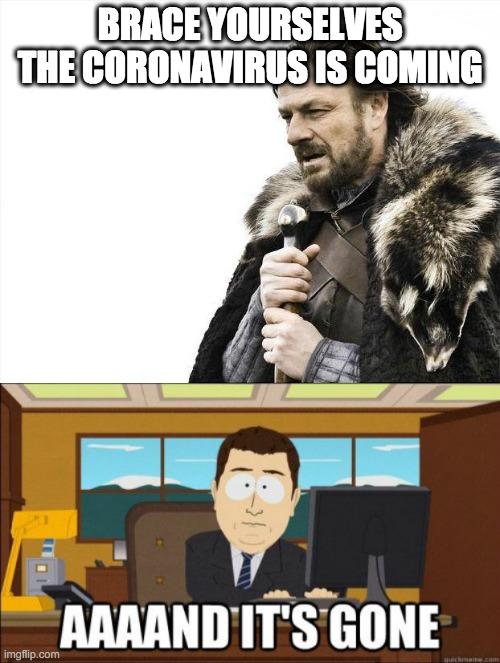 BRACE YOURSELVES THE CORONAVIRUS IS COMING | image tagged in memes,brace yourselves x is coming,aaand its gone,coronavirus | made w/ Imgflip meme maker