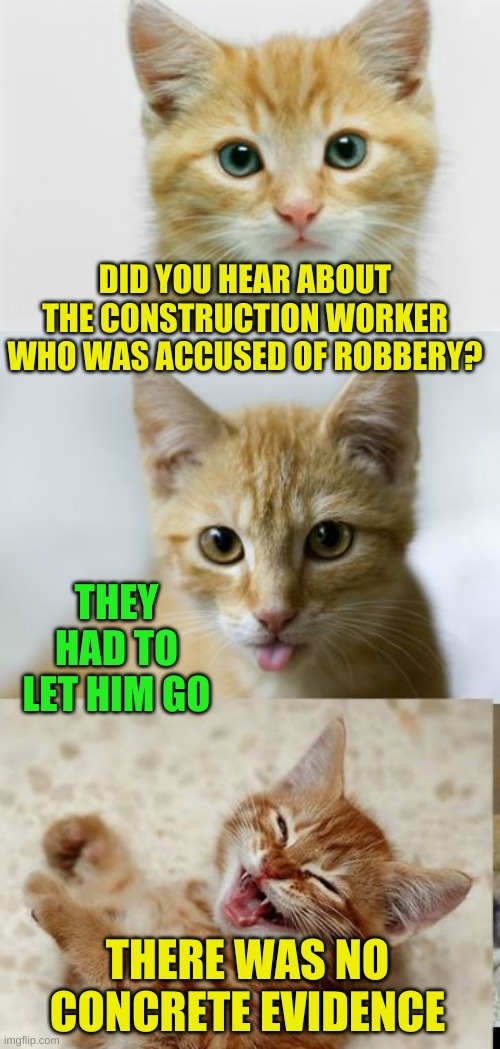 Cute Pun Cat |  DID YOU HEAR ABOUT THE CONSTRUCTION WORKER WHO WAS ACCUSED OF ROBBERY? THEY HAD TO LET HIM GO; THERE WAS NO CONCRETE EVIDENCE | image tagged in bad pun cat,memes,construction worker,law and order,cats,heavencanwait | made w/ Imgflip meme maker