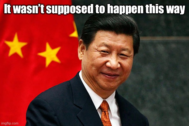 Xi Jinping | It wasn't supposed to happen this way | image tagged in xi jinping | made w/ Imgflip meme maker