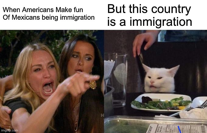 Immigration Memes |  When Americans Make fun Of Mexicans being immigration; But this country is a immigration | image tagged in memes,woman yelling at cat,tuxedo winnie the pooh,politics,funny memes,meanwhile on imgflip | made w/ Imgflip meme maker