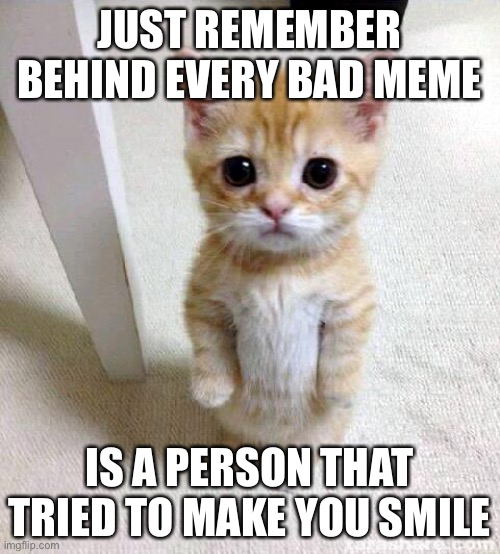 Cute Cat |  JUST REMEMBER BEHIND EVERY BAD MEME; IS A PERSON THAT TRIED TO MAKE YOU SMILE | image tagged in memes,cute cat | made w/ Imgflip meme maker