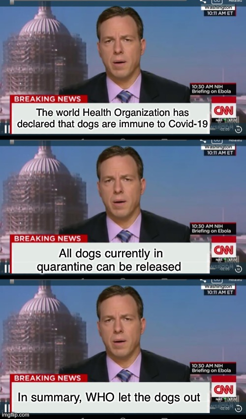 Who let the dogs out? WHO, WHO ,WHO, WHO | The world Health Organization has declared that dogs are immune to Covid-19 All dogs currently in quarantine can be released In summary, WHO | image tagged in cnn breaking news template,dogs,corona virus,covid-19 | made w/ Imgflip meme maker