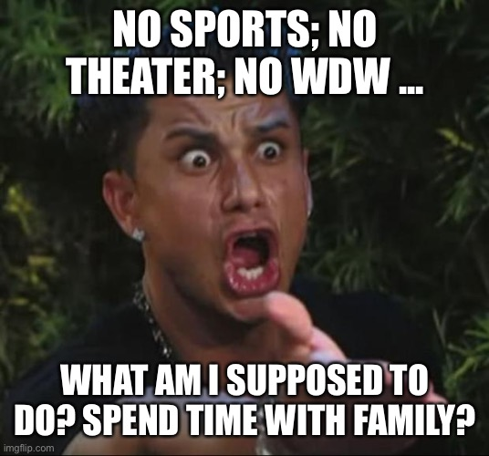 DJ Pauly D | NO SPORTS; NO THEATER; NO WDW ... WHAT AM I SUPPOSED TO DO? SPEND TIME WITH FAMILY? | image tagged in memes,dj pauly d | made w/ Imgflip meme maker