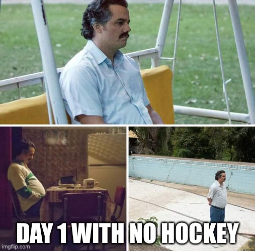 NHL |  DAY 1 WITH NO HOCKEY | image tagged in nhl,hockey,coronavirus | made w/ Imgflip meme maker