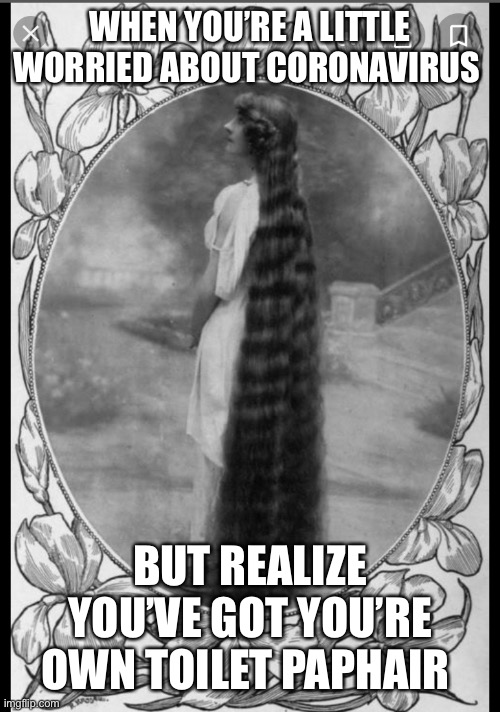 Long hair |  WHEN YOU'RE A LITTLE WORRIED ABOUT CORONAVIRUS; BUT REALIZE YOU'VE GOT YOU'RE OWN TOILET PAPHAIR | image tagged in long hair | made w/ Imgflip meme maker