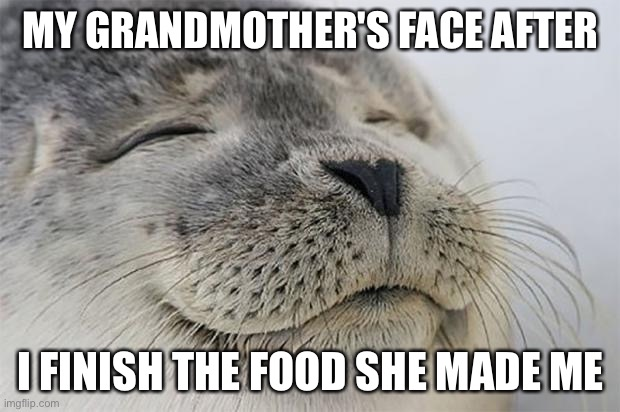 Satisfied Seal |  MY GRANDMOTHER'S FACE AFTER; I FINISH THE FOOD SHE MADE ME | image tagged in memes,satisfied seal | made w/ Imgflip meme maker