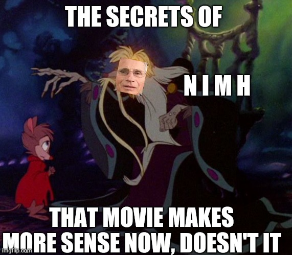 N I M H |  N I M H; THE SECRETS OF; THAT MOVIE MAKES MORE SENSE NOW, DOESN'T IT | image tagged in memes,secret of nimh,national institute of mental health,back in the day,good times,the good old days | made w/ Imgflip meme maker