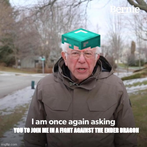 Bernie I Am Once Again Asking For Your Support |  YOU TO JOIN ME IN A FIGHT AGAINST THE ENDER DRAGON | image tagged in bernie i am once again asking for your support | made w/ Imgflip meme maker