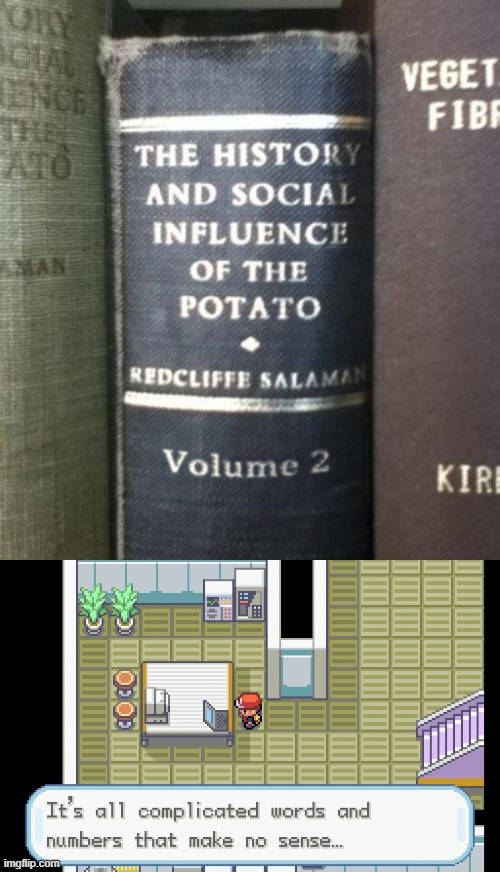 Ah, yes, POTATO | image tagged in it's all complicated words and numbers that make no sense,potato,i am a potato,so much books,history | made w/ Imgflip meme maker