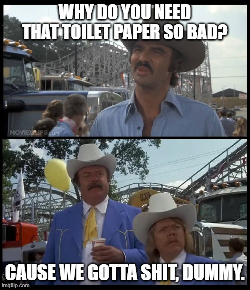 Bandit paper |  WHY DO YOU NEED THAT TOILET PAPER SO BAD? CAUSE WE GOTTA SHIT, DUMMY. | image tagged in toilet paper,epidemic,corona,bandit | made w/ Imgflip meme maker