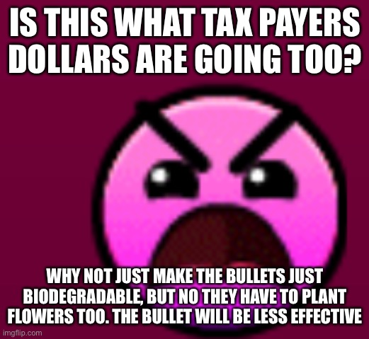 IS THIS WHAT TAX PAYERS DOLLARS ARE GOING TOO? WHY NOT JUST MAKE THE BULLETS JUST BIODEGRADABLE, BUT NO THEY HAVE TO PLANT FLOWERS TOO. THE  | made w/ Imgflip meme maker