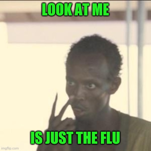 When Someone Sneezes | LOOK AT ME IS JUST THE FLU | image tagged in memes,look at me | made w/ Imgflip meme maker