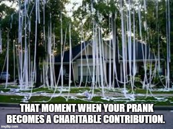 THAT MOMENT WHEN YOUR PRANK BECOMES A CHARITABLE CONTRIBUTION. | image tagged in toilet paper | made w/ Imgflip meme maker