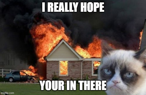 Burn Kitty Meme | I REALLY HOPE YOUR IN THERE | image tagged in memes,burn kitty,grumpy cat | made w/ Imgflip meme maker