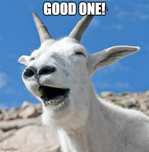 Laughing Goat Meme | GOOD ONE! | image tagged in memes,laughing goat | made w/ Imgflip meme maker