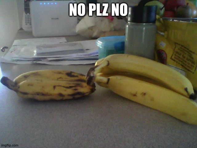 Bannana - 1 in 1000 | NO PLZ NO | image tagged in bannana - 1 in 1000 | made w/ Imgflip meme maker