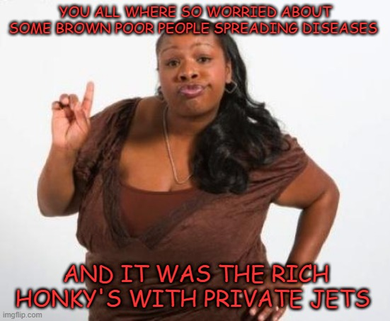 Sassy Black Lady | YOU ALL WHERE SO WORRIED ABOUT SOME BROWN POOR PEOPLE SPREADING DISEASES AND IT WAS THE RICH HONKY'S WITH PRIVATE JETS | image tagged in sassy black lady | made w/ Imgflip meme maker