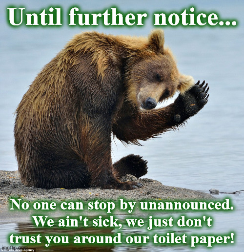 bear |  Until further notice... No one can stop by unannounced. We ain't sick, we just don't trust you around our toilet paper! | image tagged in bear | made w/ Imgflip meme maker