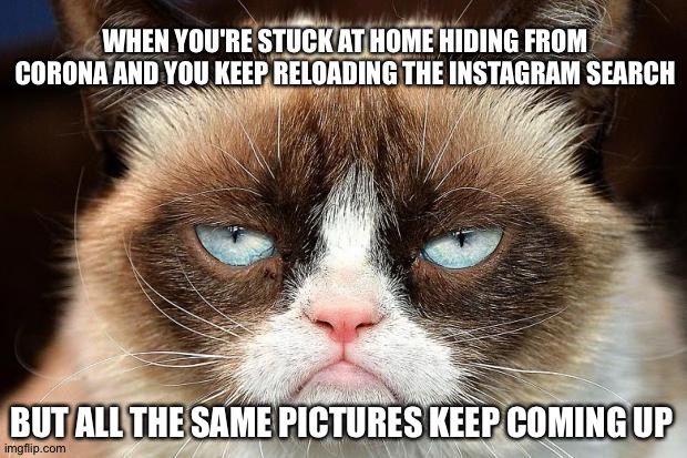 Grumpy Cat Not Amused |  WHEN YOU'RE STUCK AT HOME HIDING FROM CORONA AND YOU KEEP RELOADING THE INSTAGRAM SEARCH; BUT ALL THE SAME PICTURES KEEP COMING UP | image tagged in memes,grumpy cat not amused,grumpy cat | made w/ Imgflip meme maker