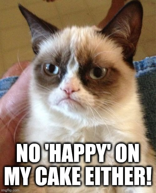 Grumpy Cat Meme | NO 'HAPPY' ON MY CAKE EITHER! | image tagged in memes,grumpy cat | made w/ Imgflip meme maker