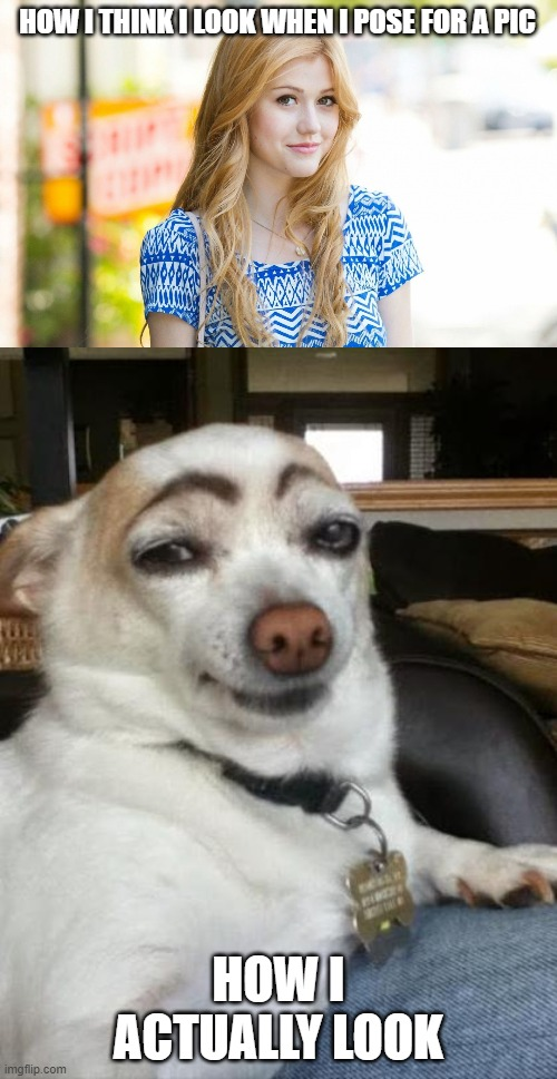 HOW I THINK I LOOK WHEN I POSE FOR A PIC; HOW I ACTUALLY LOOK | image tagged in hot girl,funny dog | made w/ Imgflip meme maker