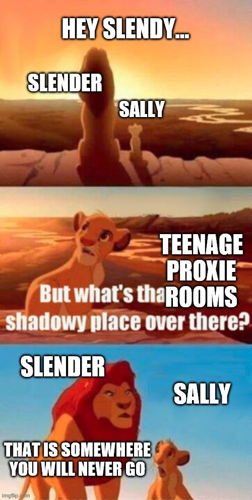 Simba Shadowy Place Meme |  HEY SLENDY... SLENDER; SALLY; TEENAGE PROXIE ROOMS; SLENDER; SALLY; THAT IS SOMEWHERE YOU WILL NEVER GO | image tagged in memes,simba shadowy place | made w/ Imgflip meme maker