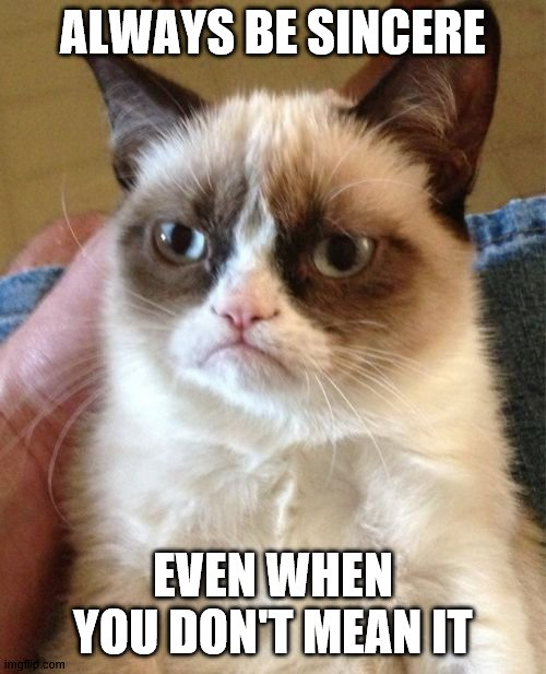 Grumpy Cat | ALWAYS BE SINCERE EVEN WHEN YOU DON'T MEAN IT | image tagged in memes,grumpy cat | made w/ Imgflip meme maker