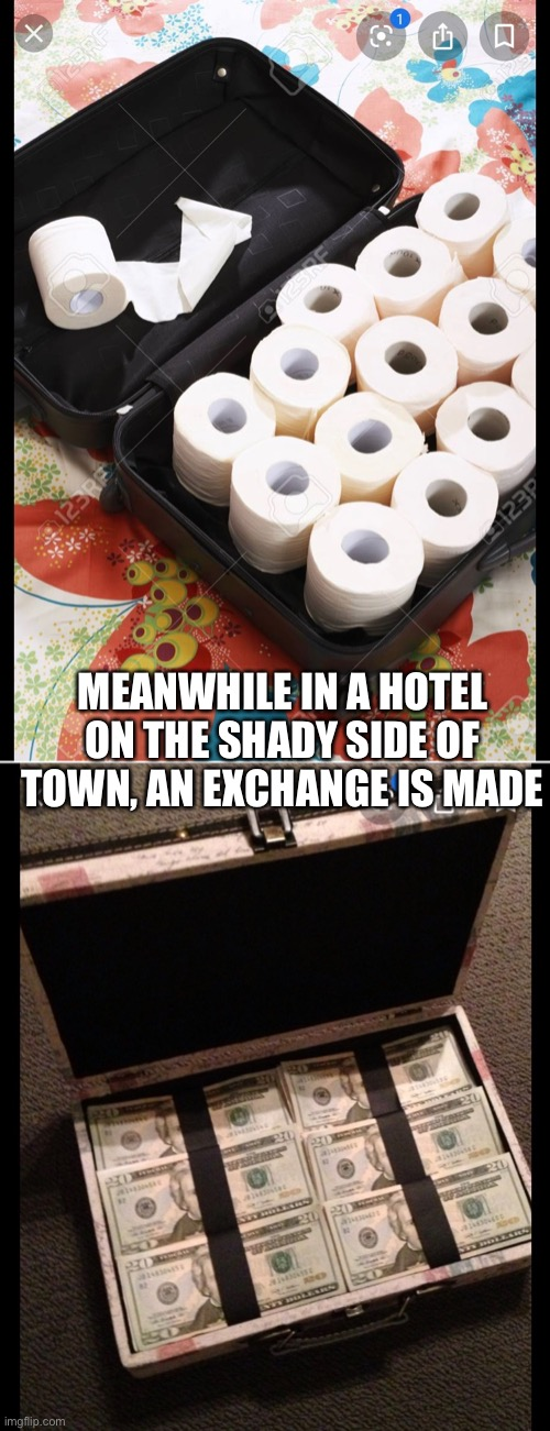 The exchange | MEANWHILE IN A HOTEL ON THE SHADY SIDE OF TOWN, AN EXCHANGE IS MADE | image tagged in toilet paper | made w/ Imgflip meme maker