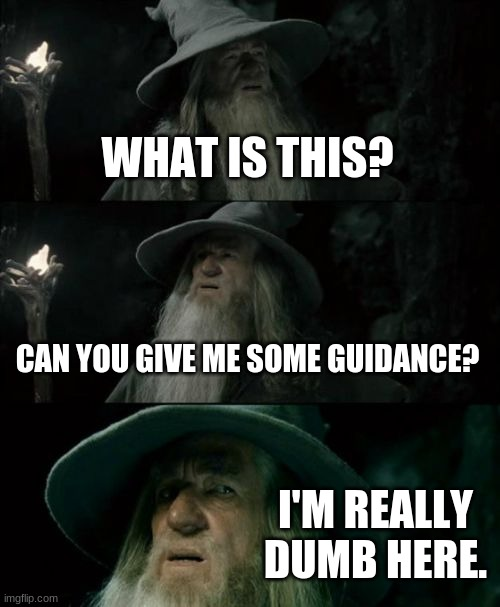 Confused Gandalf Meme | WHAT IS THIS? CAN YOU GIVE ME SOME GUIDANCE? I'M REALLY DUMB HERE. | image tagged in memes,confused gandalf | made w/ Imgflip meme maker