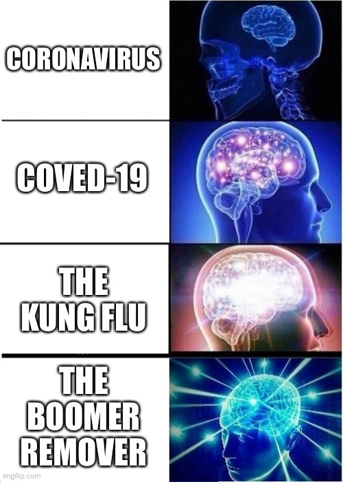 Names for corona virus | CORONAVIRUS COVED-19 THE KUNG FLU THE BOOMER REMOVER | image tagged in memes,expanding brain | made w/ Imgflip meme maker