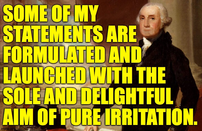 I don't know for a fact that Washington never said this  ( : | SOME OF MY STATEMENTS ARE FORMULATED AND LAUNCHED WITH THE SOLE AND DELIGHTFUL AIM OF PURE IRRITATION. | image tagged in memes,so there,maybe it's a quote,why are we here | made w/ Imgflip meme maker