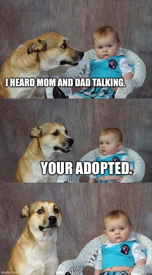Dad Joke Dog Meme | I HEARD MOM AND DAD TALKING. YOUR ADOPTED. | image tagged in memes,dad joke dog | made w/ Imgflip meme maker